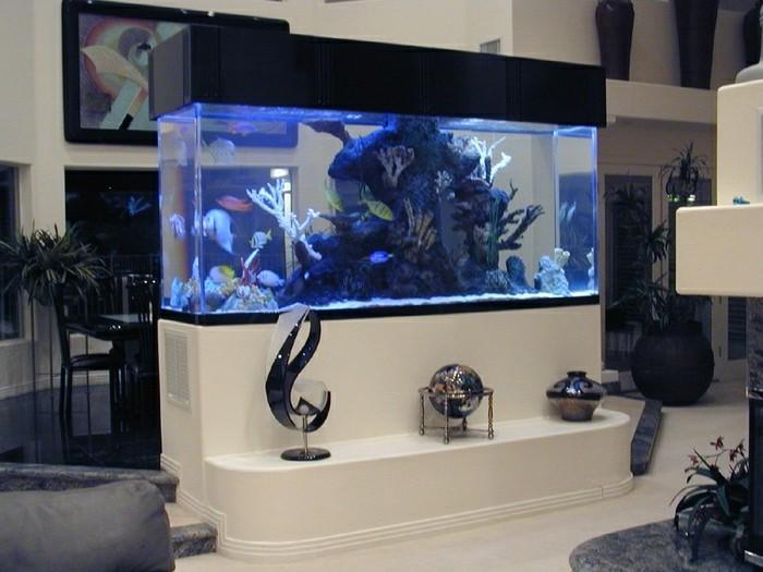 Decoration salon avec aquarium