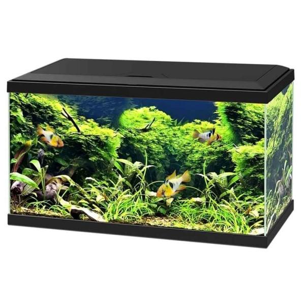 Aquarium 150 litres pas cher