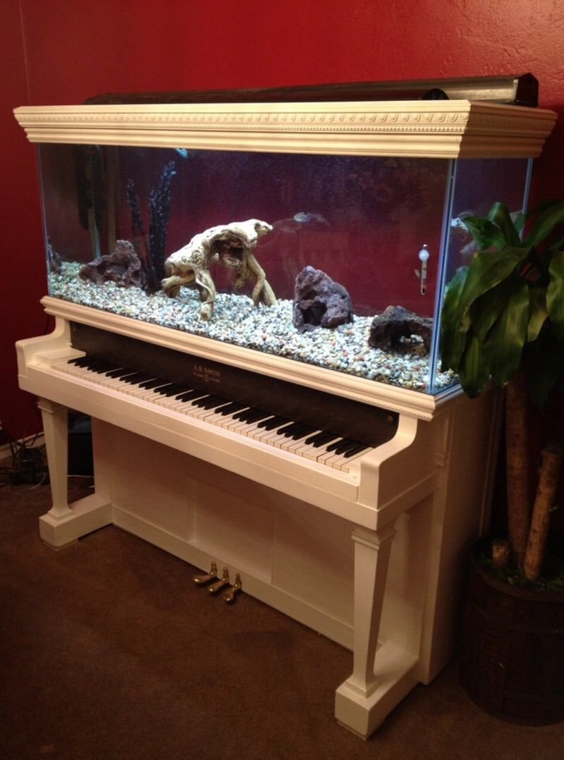 Maison avec aquarium