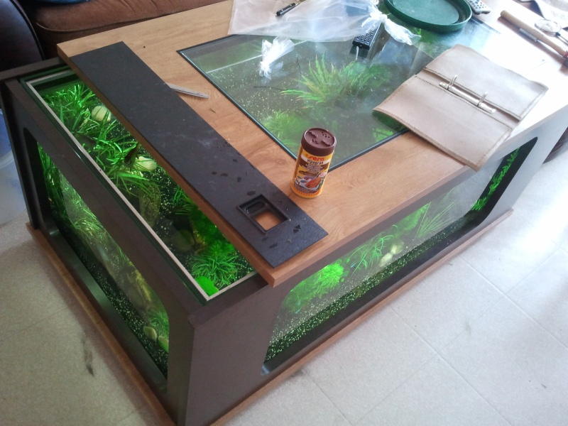 Table basse aquarium 300l