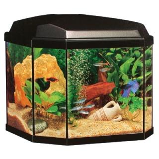 Aquarium 30l prix