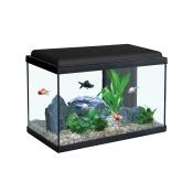 Aquarium pour poisson rouge prix