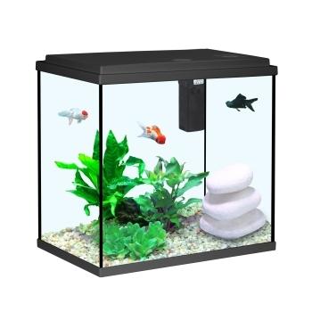 Prix des aquarium dans les animalerie