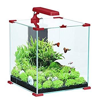 Aquarium 50l pas cher