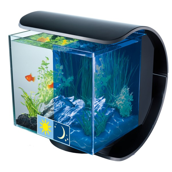 Aquarium pas cher animalis