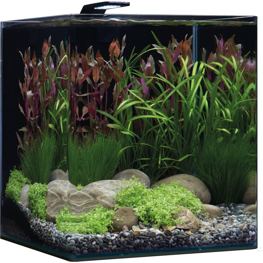 Aquarium 60l jardiland