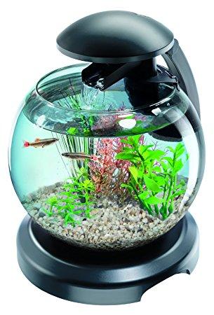 Petit aquarium avec pompe pas cher