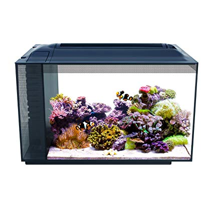 Aquarium fluval a vendre