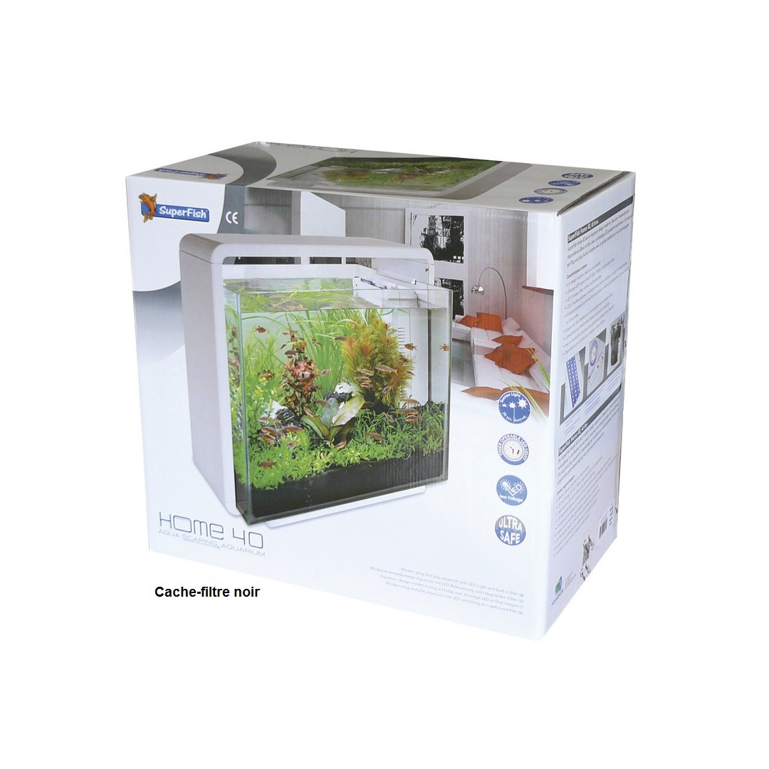 Aquarium poisson occasion