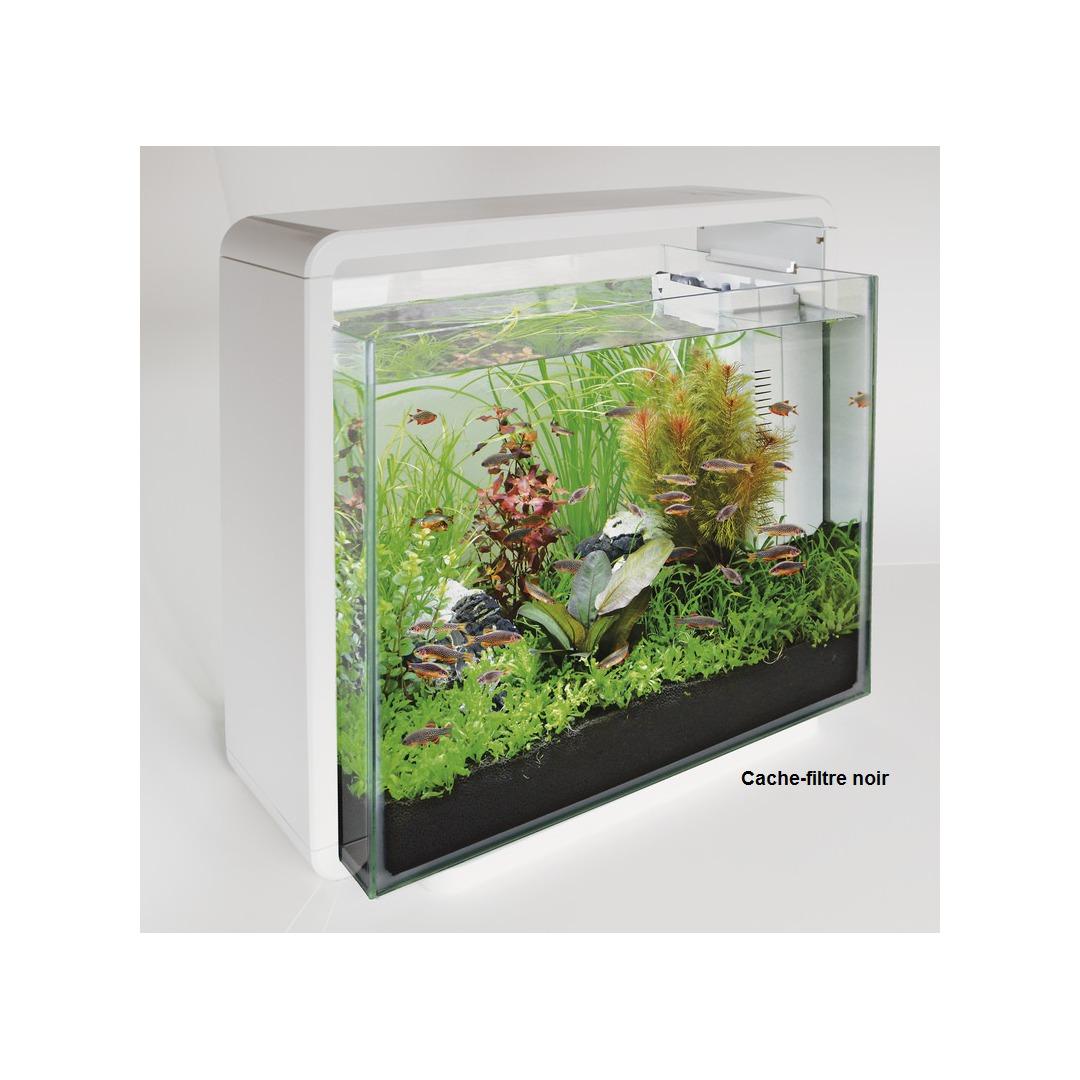 Aquarium pour poisson rouge design