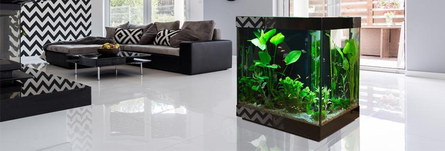Acheter aquarium design
