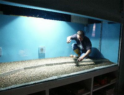 Aquarium de 200 litres