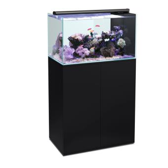Prix aquarium 200 litres