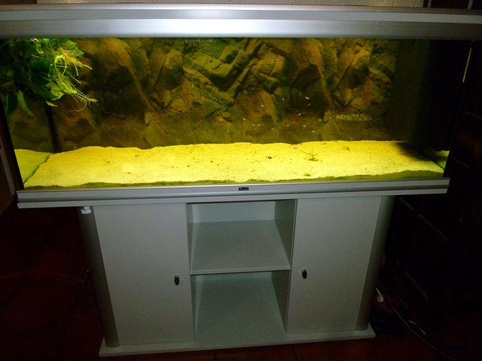 Aquarium 300 litres prix