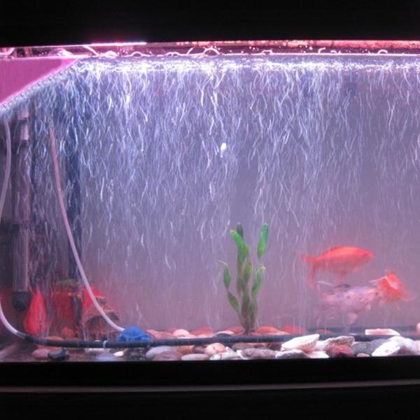 Aquarium 120 cm occasion