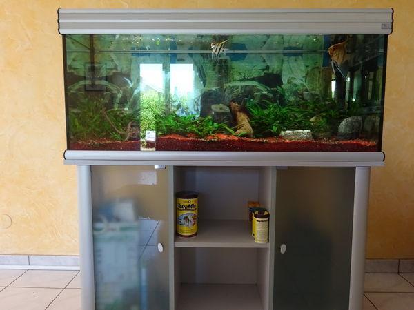 Aquarium avec meuble a vendre