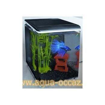 Vente privée aquarium