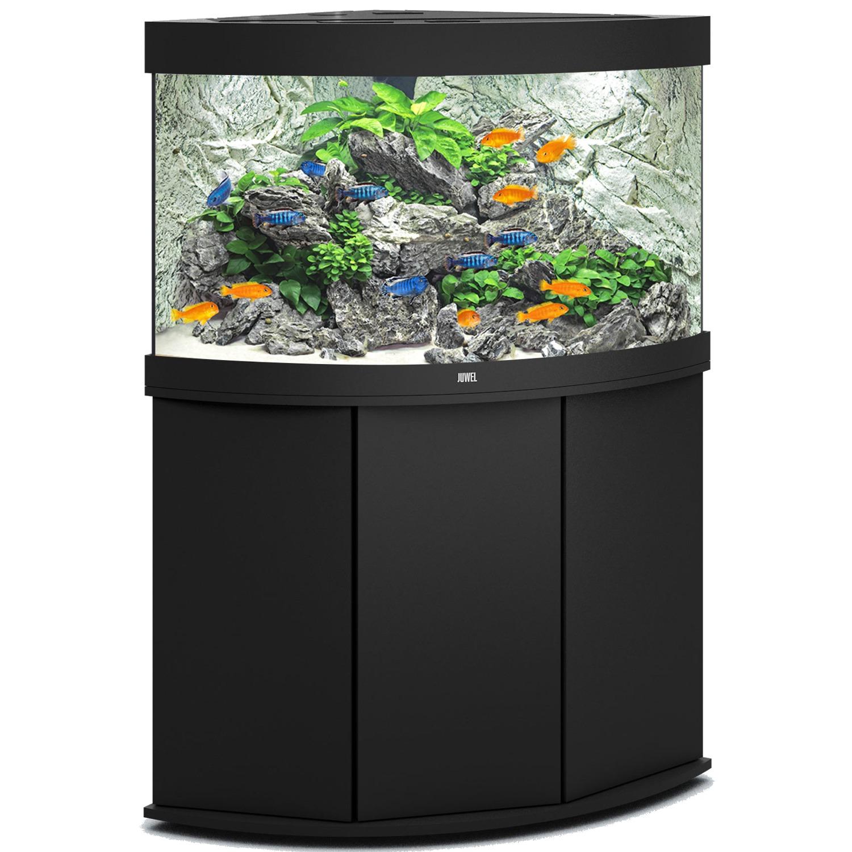 Aquarium 60 litres avec meuble