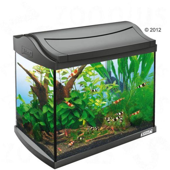 Prix aquarium 60 litres