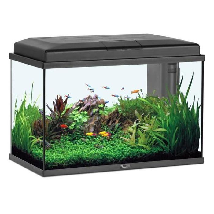 Prix aquarium 100l