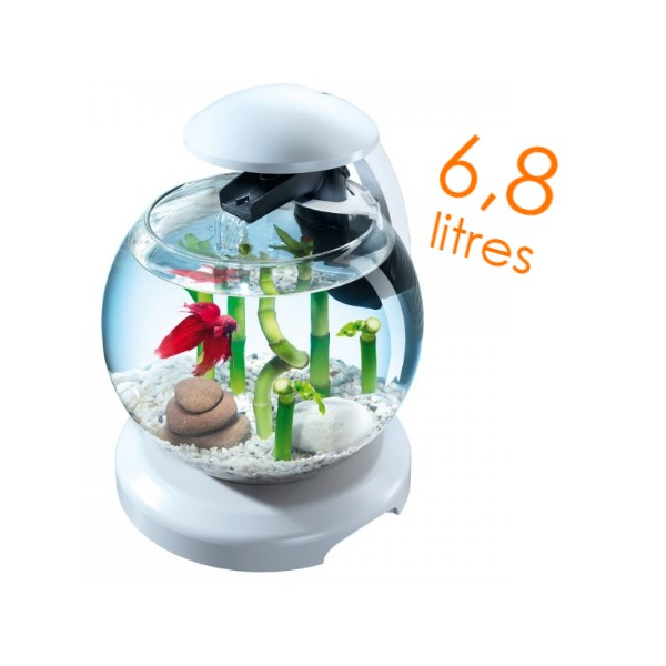 Petit aquarium pas cher neuf