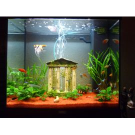 Vente accessoire aquarium