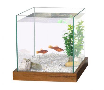Prix aquarium jardiland