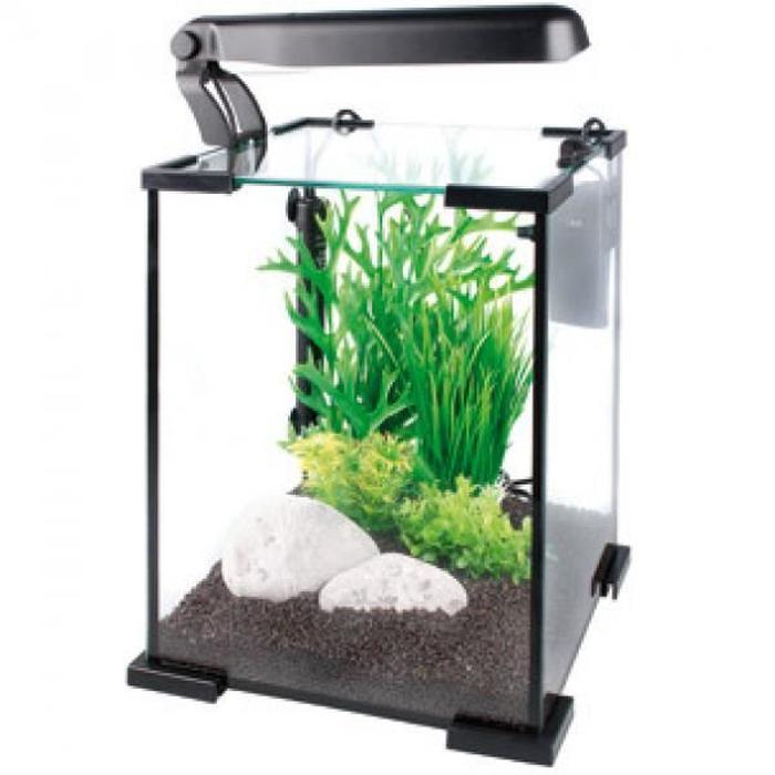Aquarium design maison
