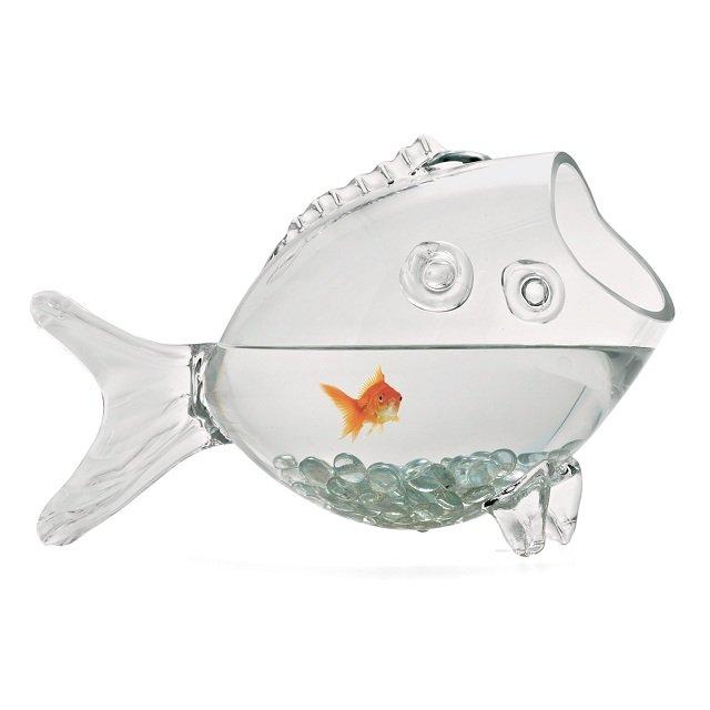 Aquarium forme poisson