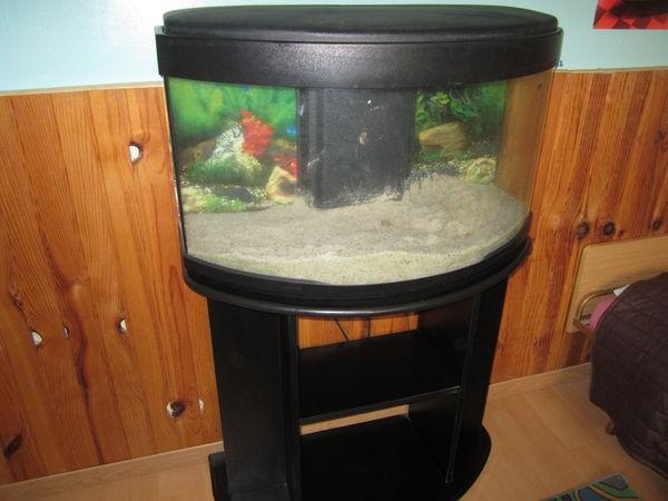 Aquarium 250 litres occasion