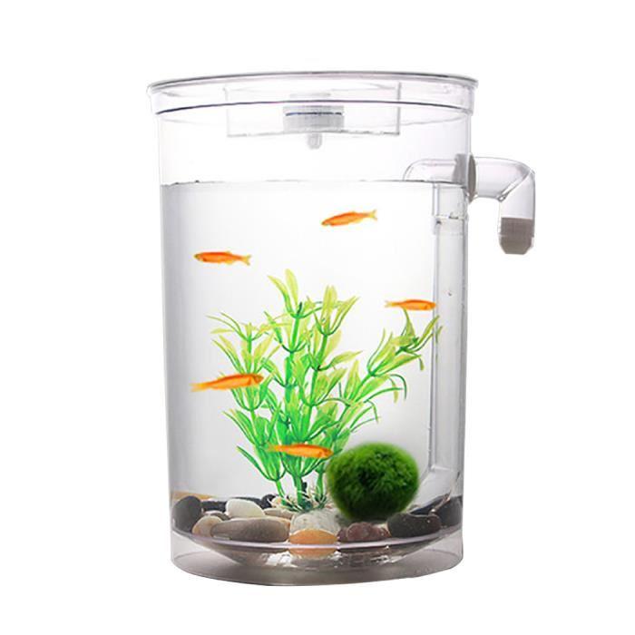 Aquarium pas cher poisson rouge