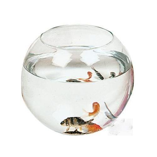 Aquarium rond pas cher
