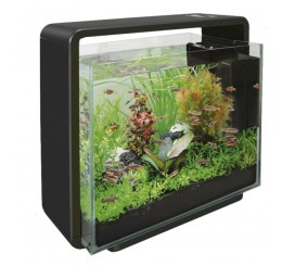 Vente aquarium eau douce