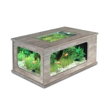 Aquarium botanic prix