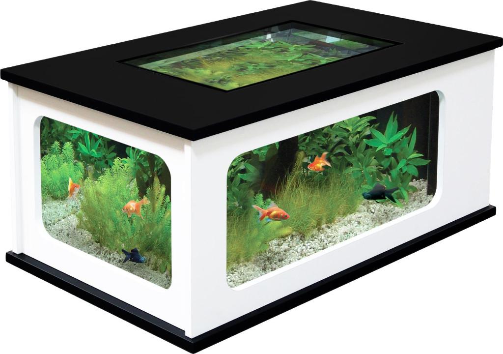 Aquarium en table basse pas cher