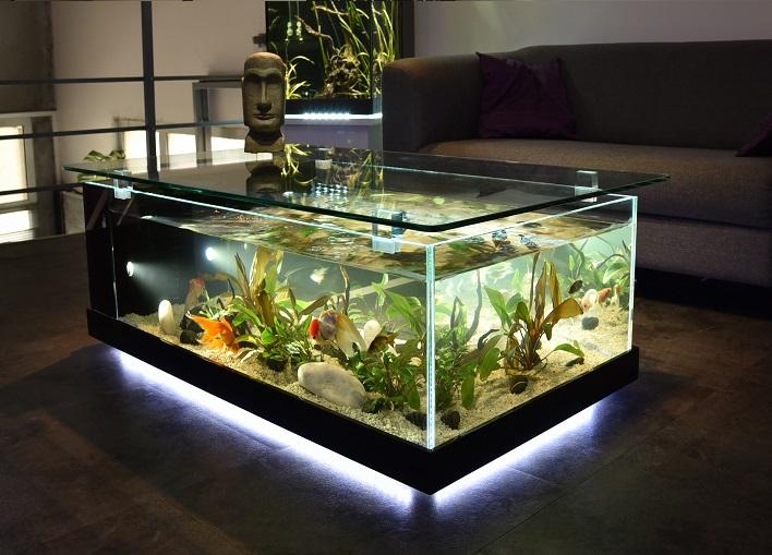 Aquarium occasion bon coin