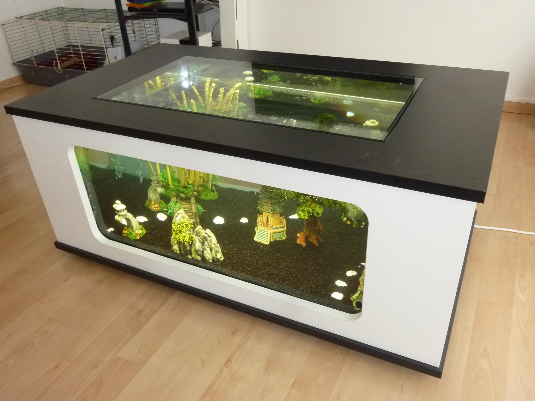 Table basse aquarium ronde