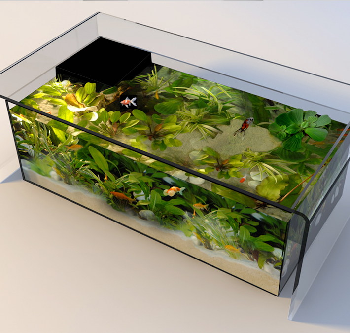 Table aquarium ronde