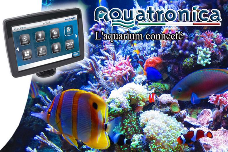 Aquariophilie vente en ligne