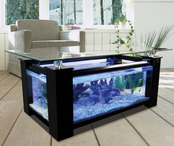 Aquarium table basse jardiland