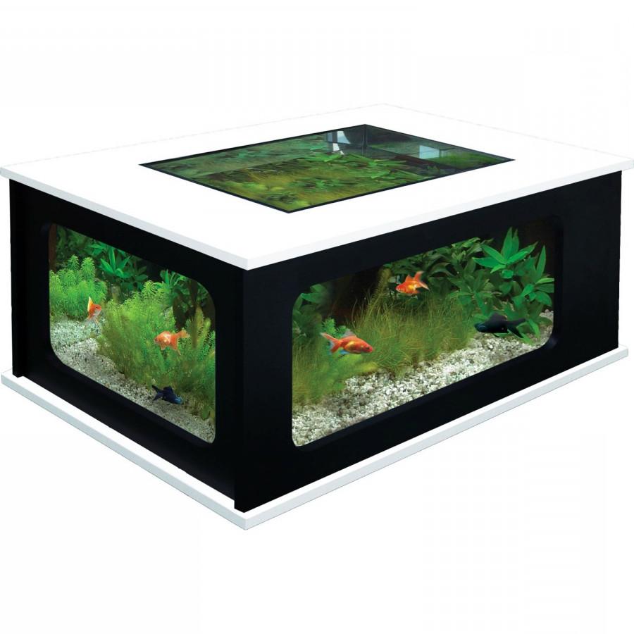 Aquarium table basse pas cher
