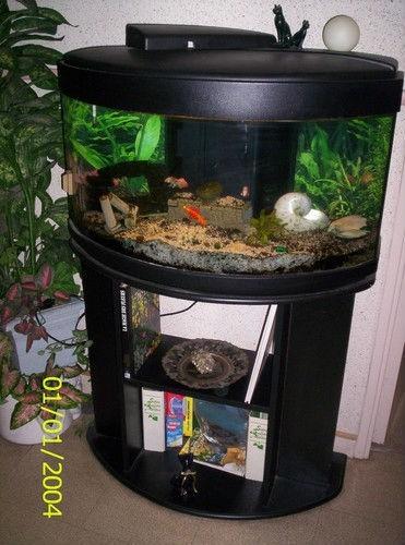 Aquarium occasion nice
