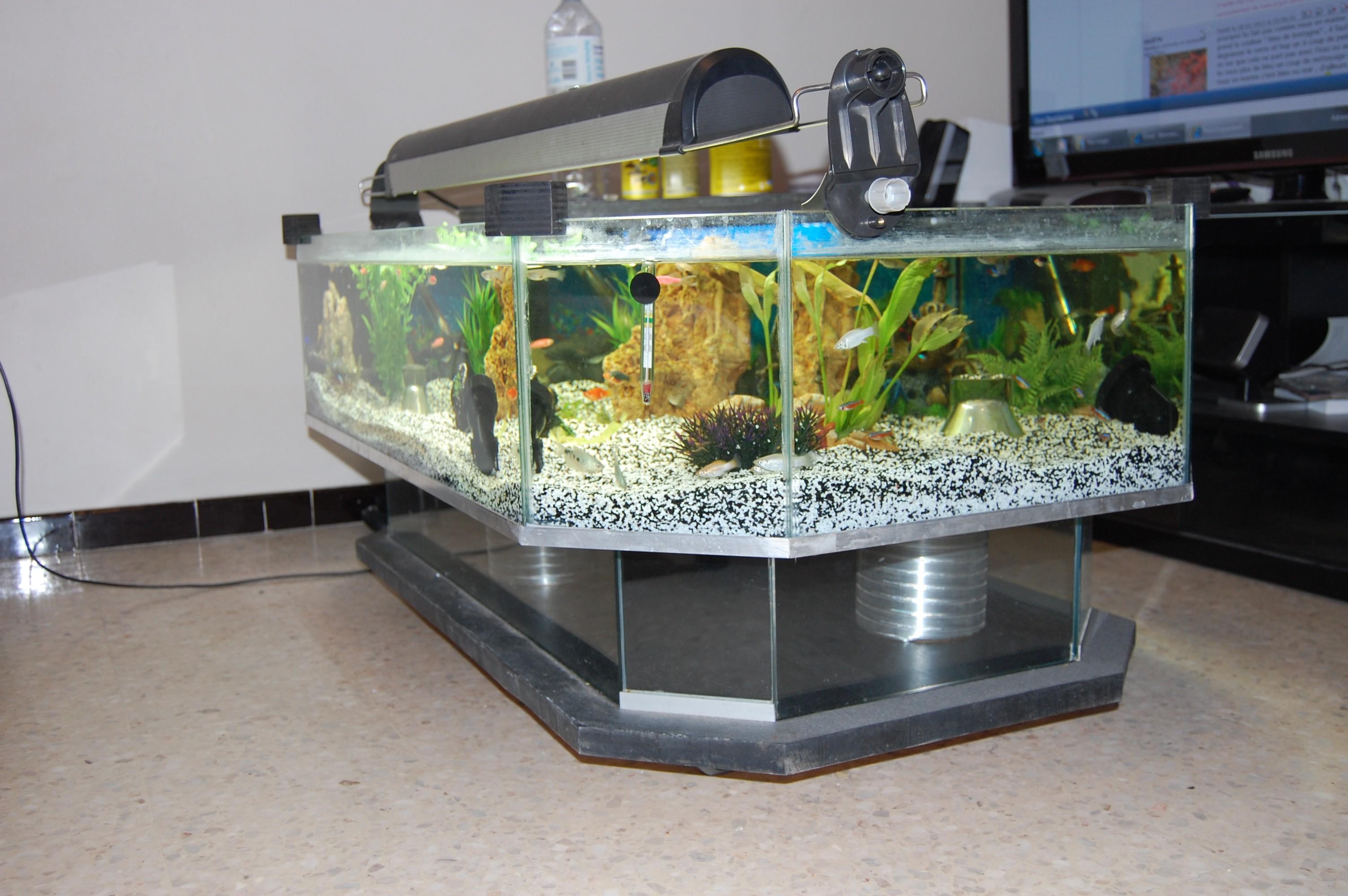 Aquarium en forme de table