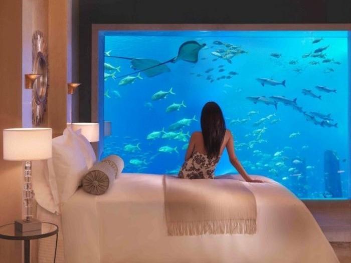 Petit aquarium mural pas cher
