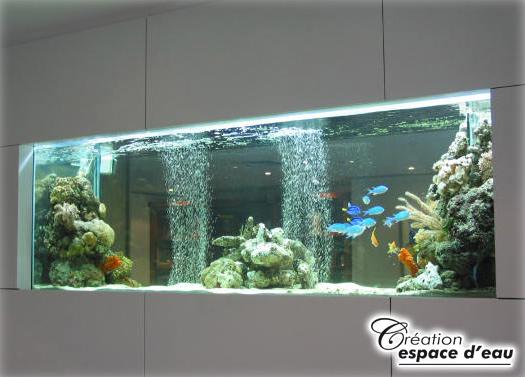 Petit aquarium mural