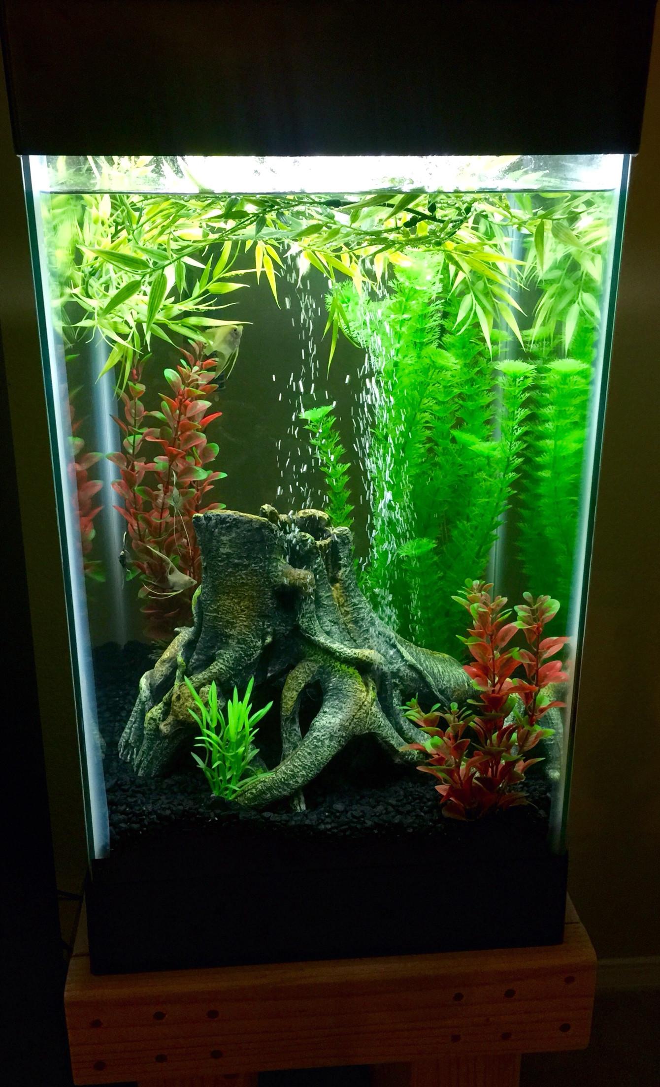 Deco aquarium pas cher