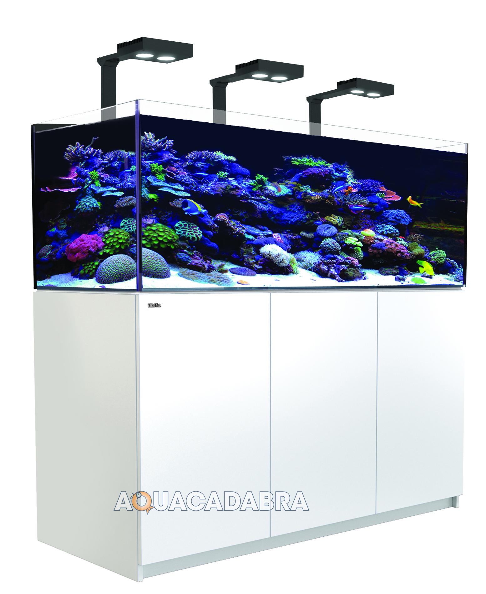 Aquarium 350 l occasion