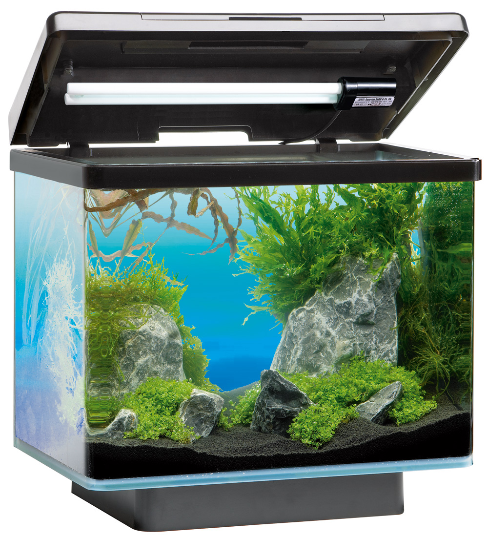 Aquarium juwel 30l