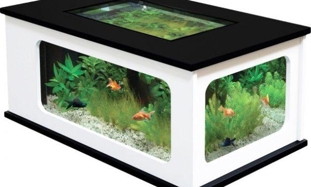 Aquarium 300 litres jardiland