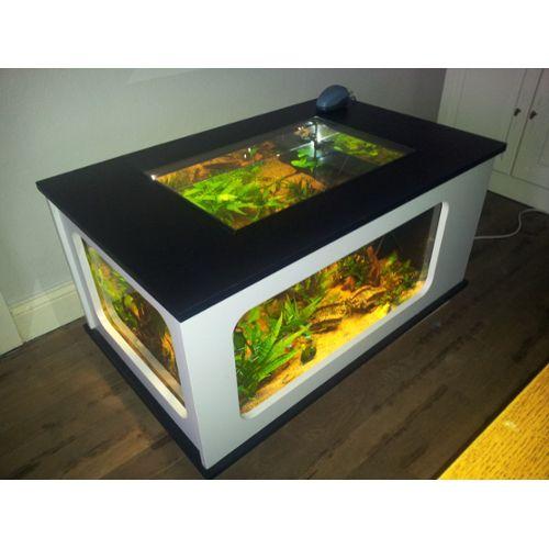 Aquarium occasion belgique a vendre